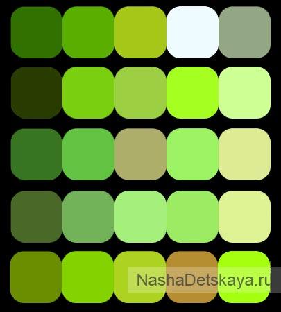 Сочетание оттенков зеленого цвета